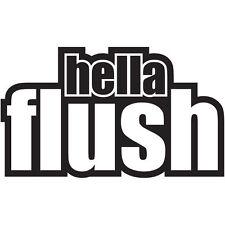 Hella Flush Auto Adhesivo Calcomanía Gráfico de vinilo Jdm Vdub