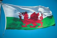 WALES WELSH RED LARGE DRAGON FLAG 5FT X 3FT EYELETS FOR HANGING Cymru Welsh