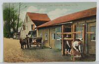 Pennsylvania, PA. Embreville, Shoeing The Oxen Postcard N6