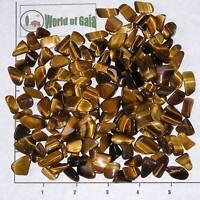 TIGEREYE GOLDEN mini-xsm tumbled, 1/2 lb bulk Tiger Eye gold
