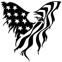 Bald Eagle USA American Flag Sticker Car Truck Laptop Window Decal Bumper Jeep