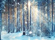 Vinyl & Polyester Forest Winter Sunlight Background Backdrop Photography Studio