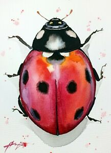 """Ladybug New watercolor original 5""""x7"""" insect art by Anne Gorywine"""