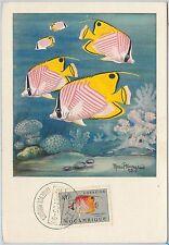 54282 - MOZAMBIQUE -  POSTAL HISTORY: MAXIMUM CARD - 1955  FISH