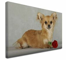 More details for chihuahua with red rose x-large 30