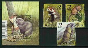 Slovenia 2015 ☀ Fauna – Rodents of Slovenia set+MSS ☀ MNH**
