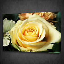 STUNNING YELLOW ROSE FLOWER WALL ART CANVAS PRINT PICTURE READY TO HANG
