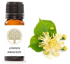 100% Pure Linden Absolute Oil
