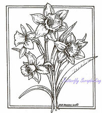 Daffodil Flower Rectangle Wood Mounted Rubber Stamp NORTHWOODS M8493 New