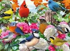 Ravensburger - GARDEN BIRDS - 500 Piece Jigsaw Puzzle