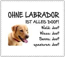 """Displayreinigunstuch GELBER Labrador """"ALLES DOOF"""" Brillenputztuch NEU GT0021"""