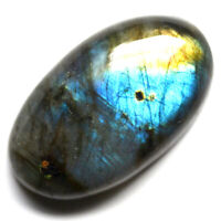 Cts. 30.05 Natural Labradorite Multi Fire Cabochon Oval Cab Loose Gemstone