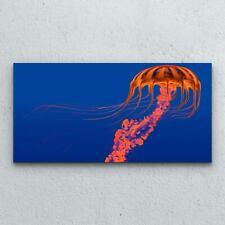 Glasbilder Wandbild Druck auf Glas Foto Bild 100x50 Orange leuchtende Qualle