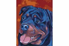 PAINTING BY NUMBERS ROTTWEILER T16130087