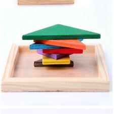 Color Wooden Tangram Brain Teaser Puzzle Educational Developmental Kids Toy