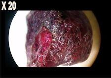Rubis rouge brut de Madagascar 4,60ct/ précieuse / minéraux / corindon ruby