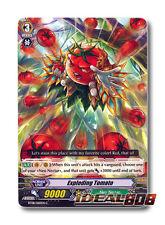 Cardfight Vanguard  x 4 Exploding Tomato - BT08/060EN - C Pack Fresh Mint