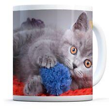 Smokey Grey Kitten - Drinks Mug Cup Kitchen Birthday Office Fun Gift #15984