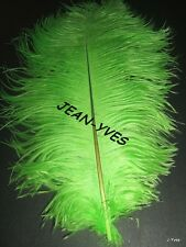 "20 LIME OSTRICH FEATHERS 10-12""L GRADE *B*"