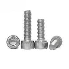 "1/4-20 UNC Stainless steel Screws Allen Socket Cap Head Bolt Nuts 5/16""-3-1/4"""