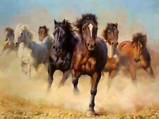 Art Print Animals Horses Oil painting Picture Printed on canvas 16x24 inch P088