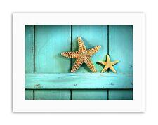 STARFISH RUSTIC TURQUOISE DOOR SEA BEACH Picture Canvas art Prints