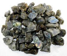 32oz Labradorite / Spectrolite Rough Stones Crystal Mineral Specimens Madagascar