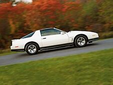 1984 PONTIAC FIREBIRD TRANS AM POSTER 24 X 36 INCH Looks GREAT!