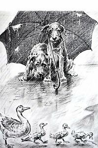 Morgan Dennis 1946 WET DOGS UNDER UMBRELLA Happy Ducks in Rain Vintage Art Print