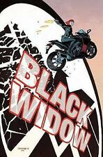 Black Widow Vol. 1: S.H.I.E.L.D.'S Most Wanted: Volume 1 by Mark Waid (Paperback