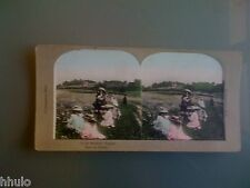STC349 Fillette fleurs marguerites couleurs STEREO Photography Stereoview