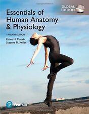 Essentials of Human Anatomy & Physiology, (Global Ed.) By Elaine Marieb, Keller
