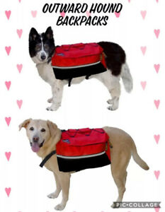 Outward Hound Quick Release Backpack Removable Pack Sz M L