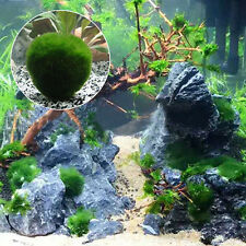 Fish Tank Aquarium Plant Green Seaweed Moss Balls Garden Home Plant Decor