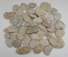 Lot 50 Galets déco plante aquarium éponge pierre naturelle
