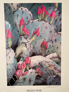 "Adele Earnshaw PRICKLY PEAR Ltd Edition Lithograph  12""×16"""