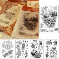 Klar Stempel Silikon Scrapbooking Album Decor Papier DIY Handwerk Schreibwaren