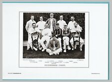 CRICKET  -  UNMOUNTED CRICKET TEAM PRINT - LEICESTERSHIRE - 1895