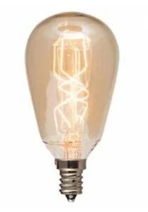 40 watt Edison bulb for wax warmer
