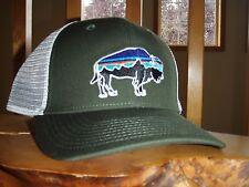Patagonia Fitz Roy Bison Organic Cotton Trucker Hat