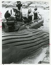 Shawn Weatherly And Humpback Whale Oceanquest Original 1985 Nbc Tv Photo