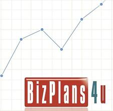 Health Care Consulting Company BUSINESS PLAN & MARKETING PLAN