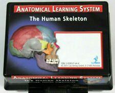 Anatomical Learning System Human Skeleton Bones Joints Ligaments 2001 Lau-Verlag