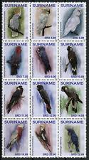 Suriname Birds on Stamps 2019 MNH Parrots & Cockatoos Parrot 12v Block