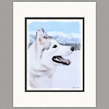 Siberian Husky Dog Silver and WHite Original Art Print 8x10 Matted to 11x14