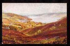 tuck bonnie Scotland lowlands garelochhead UK postcard