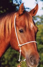 Headset Tiedown Rope Noseband by Martin Saddlery Made in Usa New Free Shipping