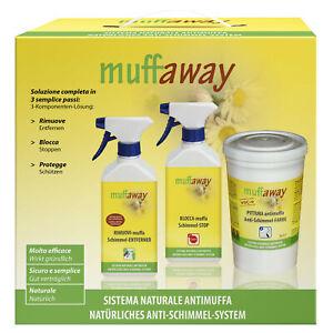 muffaway®-BOX - Sistema completo per la rimozione della muffa da pareti