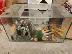 Used Fluval 20 Gallon Fish Tank with Decorations - 17in x 10in x 8.5in