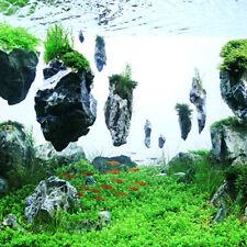 3Pcs Floating Real Rocks Aquarium Water Plant fish tank Aquatic Landscape